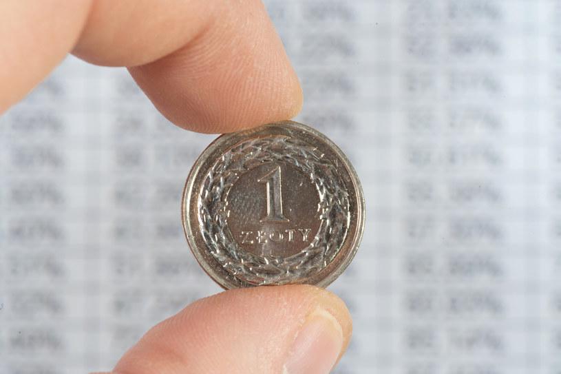 Pod koniec tygodnia złoty powinien pozostawać na stabilnym poziomie /123RF/PICSEL