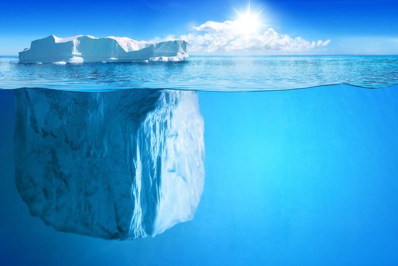 Pod lodami Antarktydy kryją się fragmenty starożytnych kontynentów /123RF/PICSEL