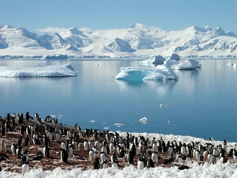 Pod lodami Antarktydy są ukryte gigantyczne kaniony /123RF/PICSEL