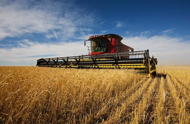 Podatek dochodowy dla rolników trzeba wprowadzić jak najszybciej /© Panthermedia