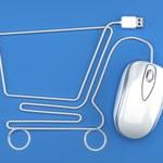 Podatek handlowy dla e-sklepów wywróciłby gospodarkę. Finalnie konsumenci sami by go ponieśli