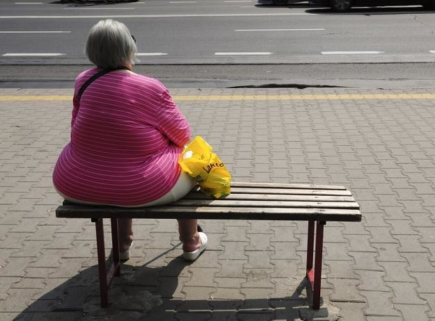 Podatek ograniczy otyłość i pośrednio poprawi nasze zdrowie. Fot. Włodzimierz Wasyluk /Reporter