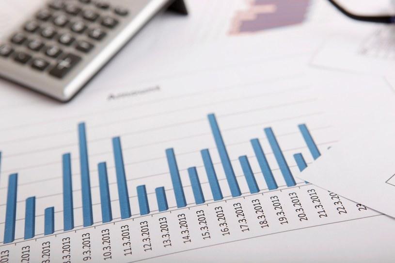 Podatki globalne będą oparte na dwóch Filarach /123RF/PICSEL