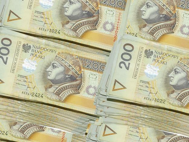 Podatnicy i inwestorzy mniejszościowi płacą za kampanię PiS? /©123RF/PICSEL