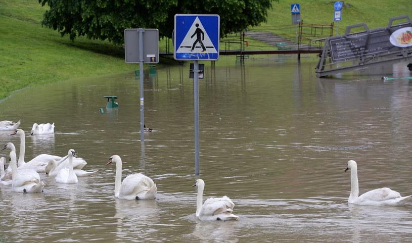Podczas burz może dojść do podtopień, ale będą to sytuacje lokalne /Jacek Bednarczyk /PAP