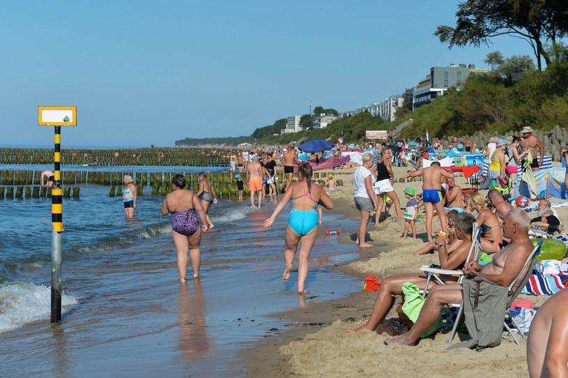 Podczas namnażania sinice wydzielają mnóstwo toksycznych substancji, które unoszą się w powietrzu. W takiej sytuacji należy unikać przebywania na plaży /GERARD/ REPORTER /East News