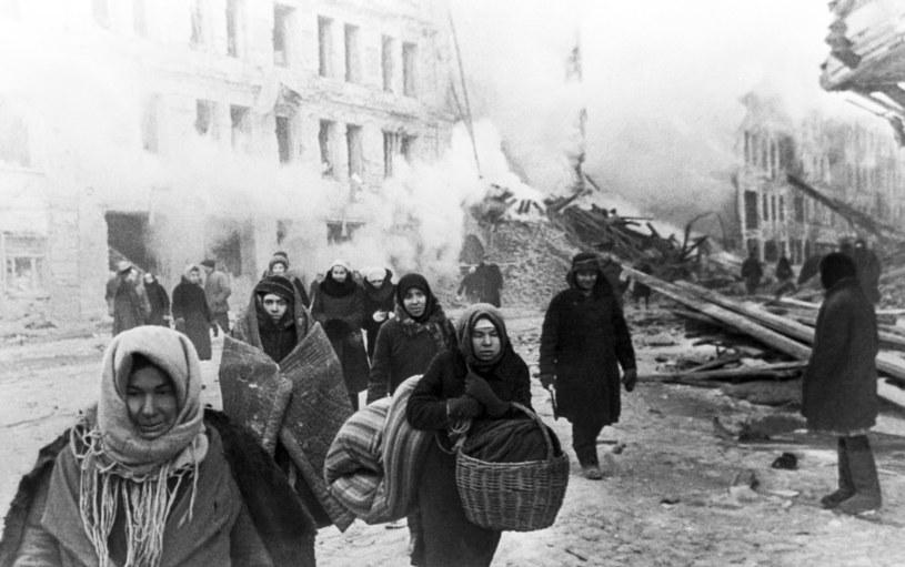 Podczas oblężenia Leningradu muzealne koty wyginęły /TASS via Getty Images /Getty Images