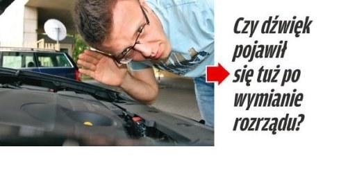Podczas pracy silnika słychać wycie /Motor