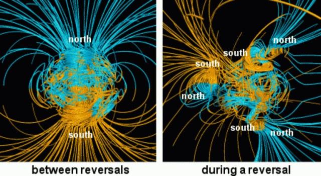 Podczas przebiegunowania Ziemia może posiadać nawet kilka północnych i południowych biegunów magnetycznych /NASA