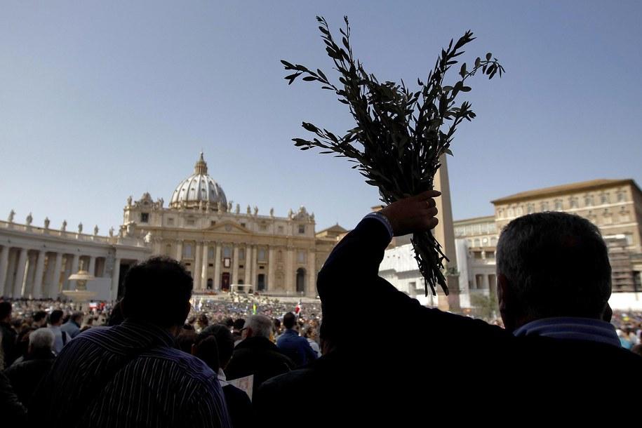 Podczas tradycyjnych procesji i mszy w Niedzielę Palmową gałązek będzie znacznie mniej niż w poprzednich latach /ANDREA SOLERO /PAP/EPA