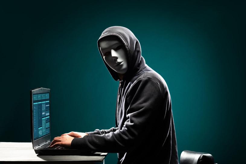 Podczas zastawionej pułapki, hakerzy atakowali średnio co 13 minut /123RF/PICSEL