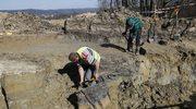 Podkarpackie: Odkryto osadę Scytów w Chotyńcu