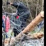 Podlaskie: Migranci siłowo sforsowali granicę. Rzucali kamieniami w strażników