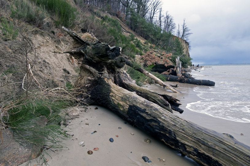 Podniesienie się poziomu mórz to bezpośrednie zagrożenie dla polskiego wybrzeża. Na tę chwilę rządzący nie mają opracowanego żadnego planu jego ochrony /Marek Michalak /East News