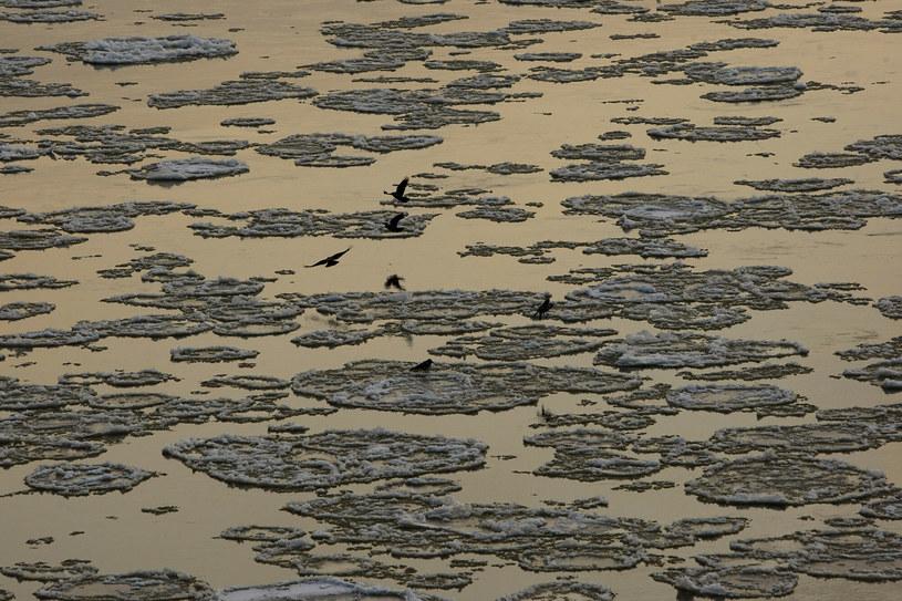 Podnosi się poziom rzek /Bartosz Krupa /East News