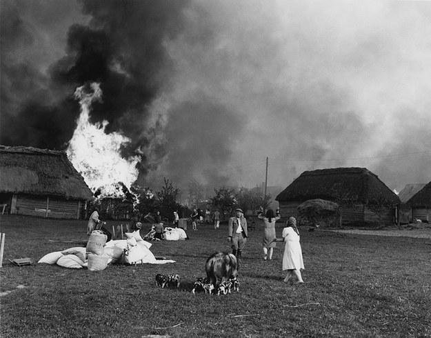 Podpalona przez ubeków Wąwolnica fot. John Vachon, archiwum prywatne Ann Vachon /Wikimedia