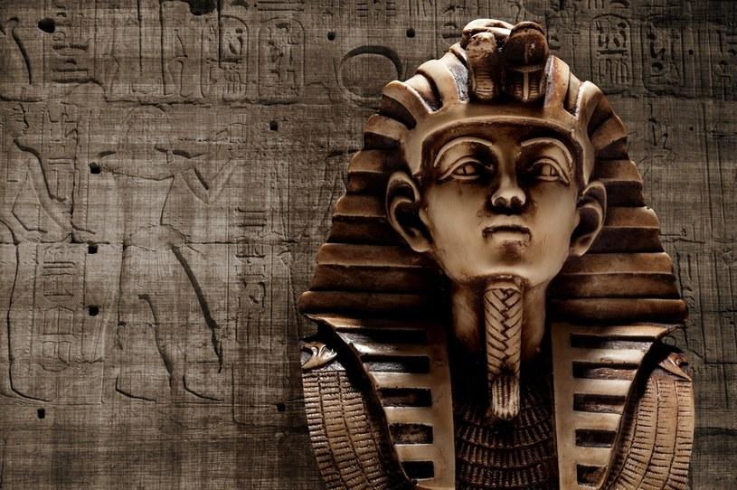 Podróż do Egiptu bywa ryzykowna /123RF/PICSEL