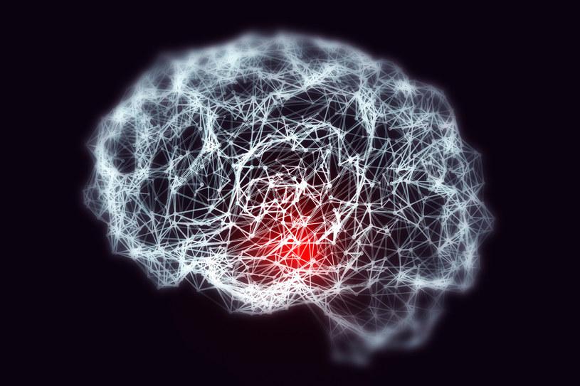 Podróże kosmiczne są szkodliwe dla ludzkiego mózgu /123RF/PICSEL