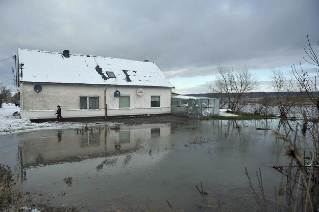 Podtopione domy w Nowakowie / fot. Adam Warżawa /PAP