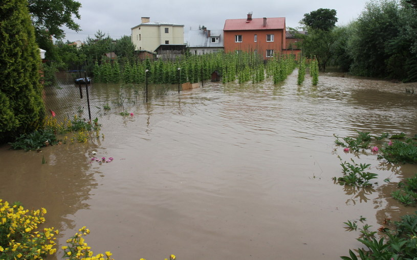 Podtopione domy w Zielonkach /Jacek Bednarczyk /PAP