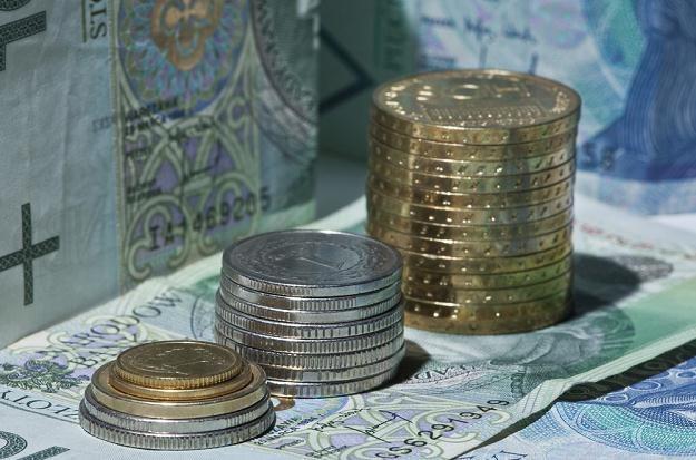 Podwładny zarabia więcej niż szef? Tak - w urzędach państwowych, fot. Leszek Kotarba /Agencja SE/East News