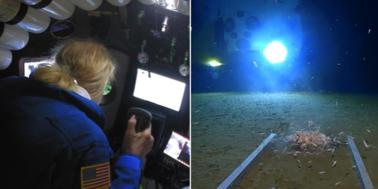 Podwodna odyseja amerykańskiego podróżnika. Na dnie Rowu Mariańskiego znalazł… śmieci