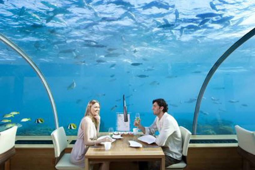 Podwodna restauracja /materiały prasowe