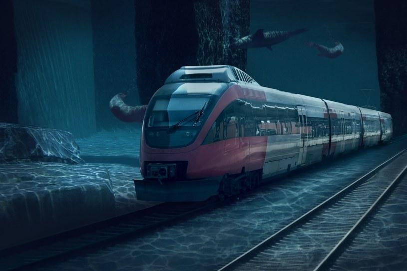 Podwodny pociąg - zdjęcie ilustracyjne /123RF/PICSEL