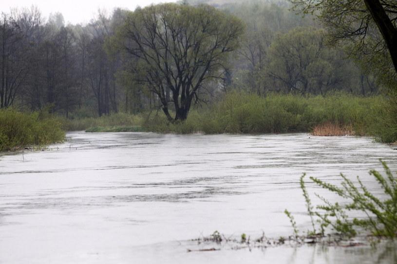 Podwyższony stan wody na rzece Warta w Mostowie /Waldemar Deska /PAP