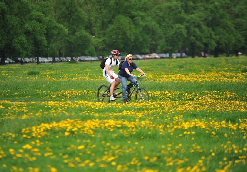 Pogoda będzie sprzyjać rowerzystom /M. Lasyk /Reporter