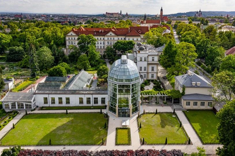 Pokaz kolekcji storczyków w Ogrodzie Botanicznym w Krakowie to jedna z największych atrakcji Dni Otwartych Funduszy Europejskich /materiały prasowe