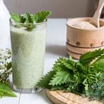 Pokrzywa – zdrowie z natury