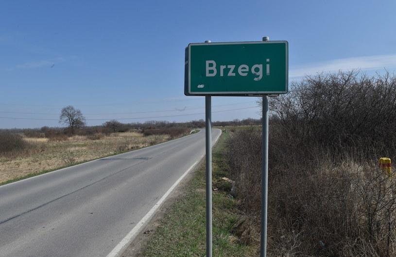 Pola na terenie podkrakowskiej wsi Brzegi /Jacek Bednarczyk /PAP