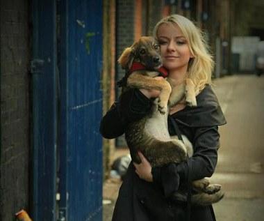 Pola Pospieszalska dla bezdomnych zwierząt