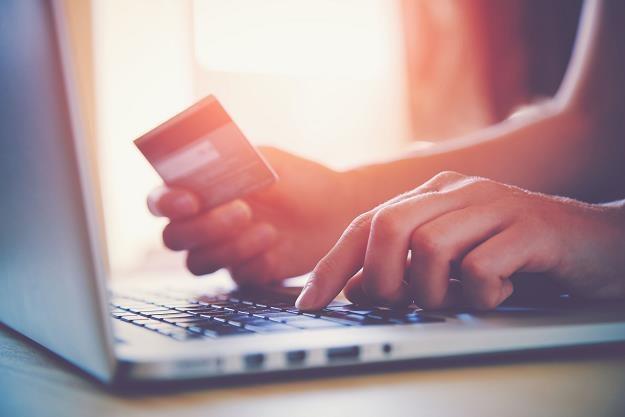 Polacy chcą robić internetowe zakupy w niedziele /©123RF/PICSEL