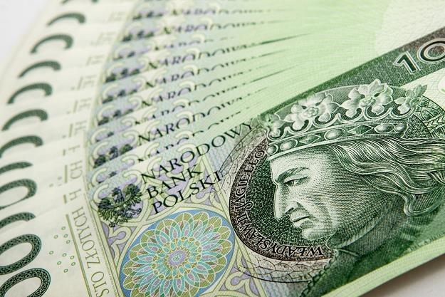 Polacy chętnie kupują obligacje skarbowe /©123RF/PICSEL