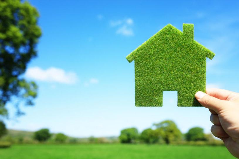 Polacy chętnie kupują ziemię! Zysk może być większy niż ten z inwestycji w mieszkania /123RF/PICSEL