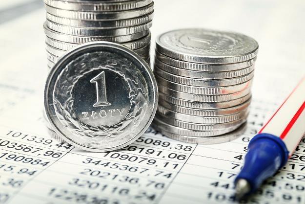 Polacy coraz chętniej kupują obligacje skarbowe /©123RF/PICSEL