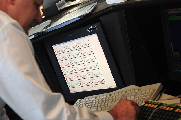 Polacy coraz chętniej przekonują się do korzystania z usług internetowych kantorów wymiany walut /AFP