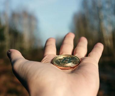 Polacy dorobili się na hossie bitcoina. Gdzie zapłacą podatki