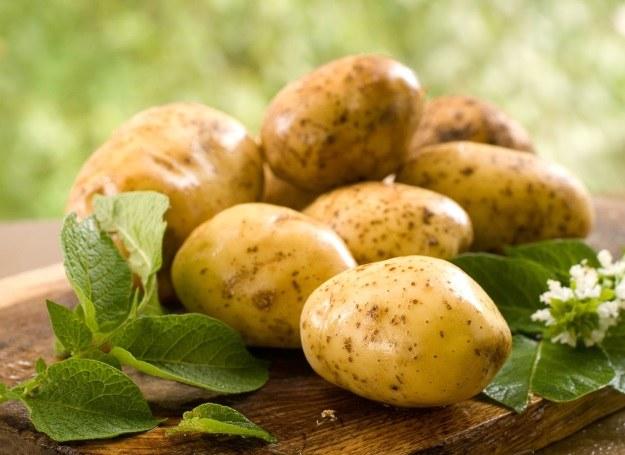 Polacy kochają ziemniaki pod każdą postacią /123RF/PICSEL