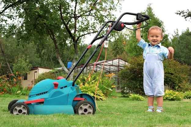 Polacy kupują maszyny ogrodowe lepszej jakości /©123RF/PICSEL