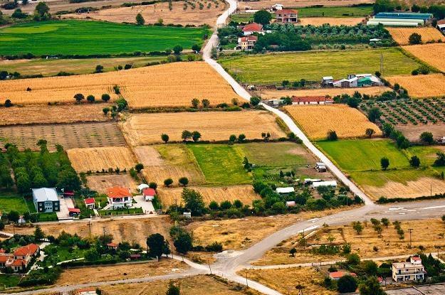 Polacy kupują ziemię /©123RF/PICSEL