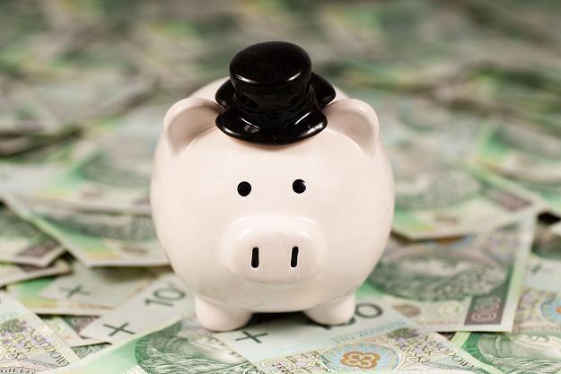 Polacy mają niską wiedzę o finansach /©123RF/PICSEL