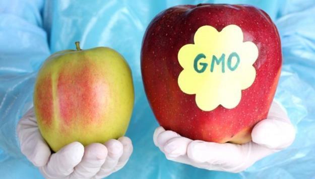 Polacy nie chcą GMO /©123RF/PICSEL