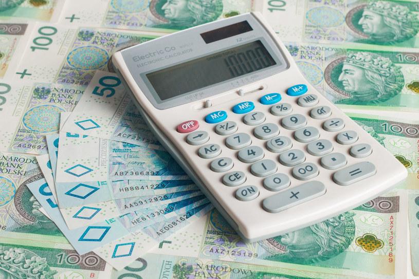 Polacy nie sprawdzają przelewów z wynagrodzeniami /123RF/PICSEL