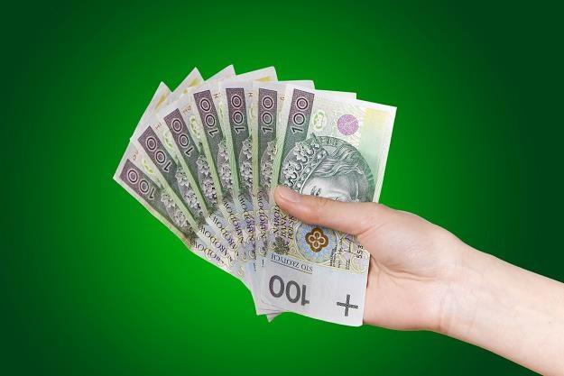 Polacy pożyczają mniej niż w ubiegłym roku /©123RF/PICSEL