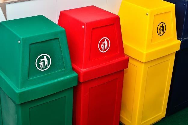 Polacy produkują coraz więcej śmieci /©123RF/PICSEL