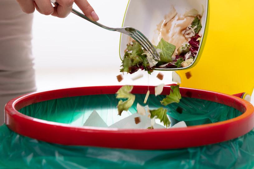 Polacy rocznie wyrzucają ok. 9 mln ton żywności /123RF/PICSEL