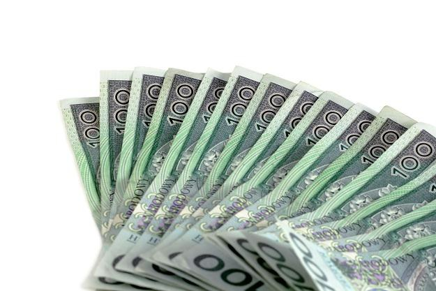 Polacy rzadko decydują się na kredyty z ratami malejącymi /©123RF/PICSEL